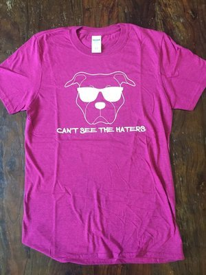 Pink Heathered T-Shirt- Can't See the Haters - Small
