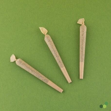 Elioraca T26 PR 7520 (3 Cones x 0.7g)(TP)