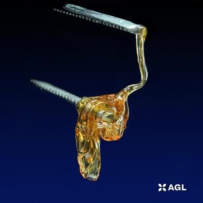 Cannabidiol H WX 2:5 T24 C58 NDC: 7684 (0.5g)(AGL)