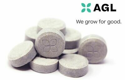Indicol Tablets NDC: 8605 (20 mg THC x 10 Tablets)(AGL)