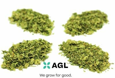 Indicol H SELECT GRIND 32.03 NDC: 8613 (7.0g)(AGL)