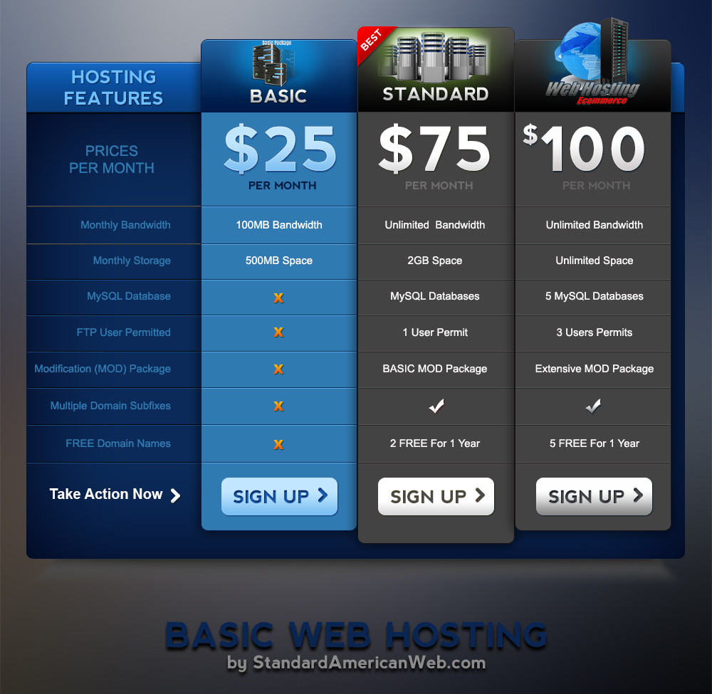 Web Hosting 1 - BASIC