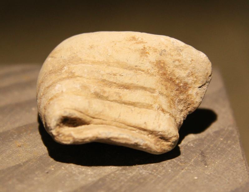 JUST ADDED ON 3/20 - GETTYSBURG - LITTLE ROUND TOP - ROSENSTEEL FAMILY - Partially Mushroomed Fired Bullet