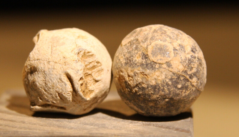 JUST ADDED ON 5/29 - ANTIETAM / MILLER'S CORNFIELD / THE WILSON FARM - Two Large Lead Case Shot from an Artillery Shell