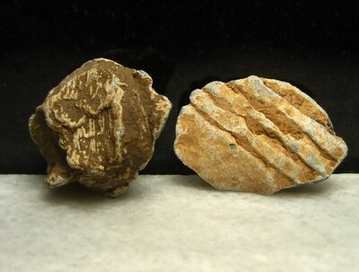 JUST ADDED ON 10/3 - THE BATTLE OF CEDAR MOUNTAIN - Fired Musket Ball or Lead Case Shot & Bullet Fragment