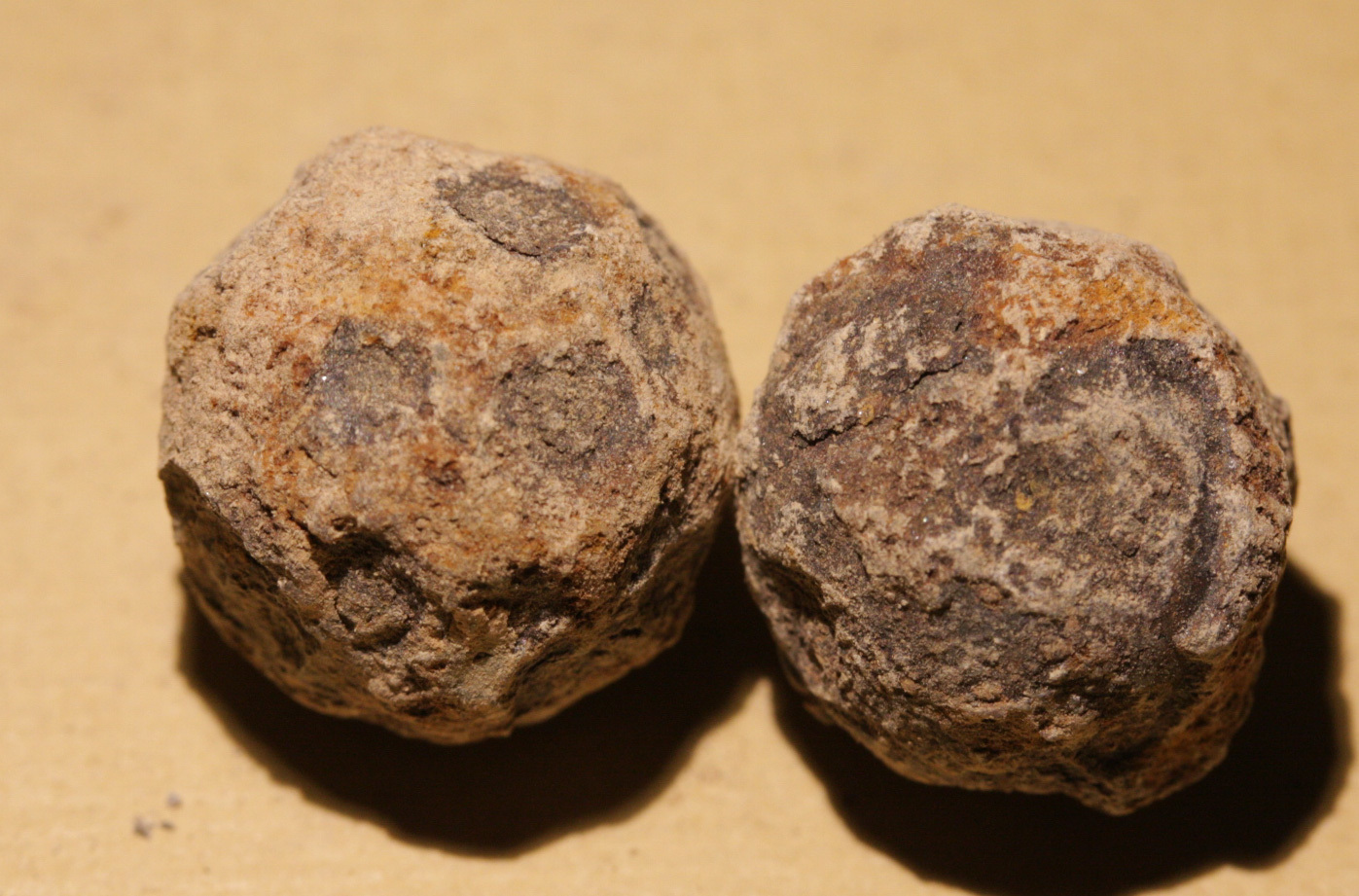 JUST ADDED ON 12/07 - THE BATTLE OF PORT REPUBLIC / JACKSON'S VALLEY CAMPAIGN - Two Iron Case Shot Balls WB-PR18