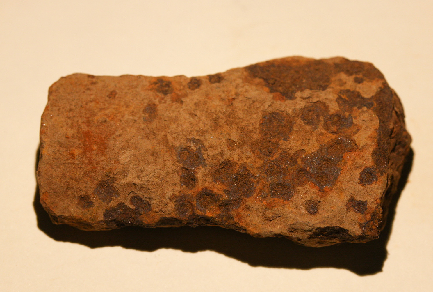 JUST ADDED ON 3/9 - GETTYSBURG - HETH'S DIVISION / HERR'S RIDGE - ROSENSTEEL FAMILY - Fragment of an Artillery Shell GR-IRHRH15
