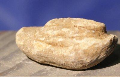 JUST ADDED ON 7/20 - GETTYSBURG - CULP'S HILL - Mushroomed Fired Bullet