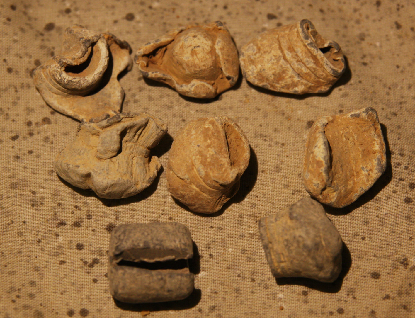 JUST ADDED ON 5/16 - BATTLE OF FORT FISHER - Group of 7 Fired Bullets & Lead Relic - Some Mushroomed / Partial Mushroomed B-FF01