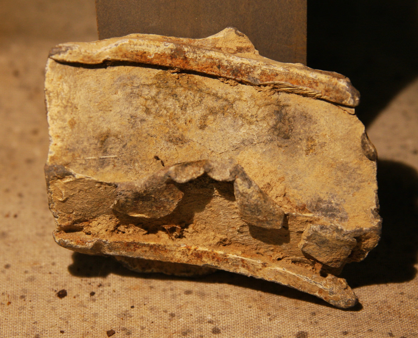 JUST ADDED ON 5/23 - THE BATTLE OF GLENDALE / WHITE OAK SWAMP - Fragment of the Sabot from a Hotchkiss Artillery Shell