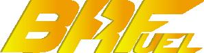BRF Race 100 - 50л