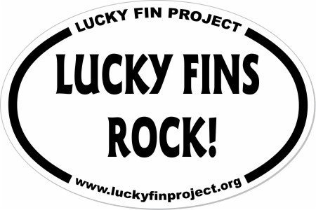 Lucky Fins Rock 4 x 6 inch Oval Bumper Sticker LFR-Bump