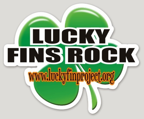 "Lucky Fins Rock Clover 4.11"" x 5.06"" Die-Cut Bumper Sticker LFRClover-BUMP"