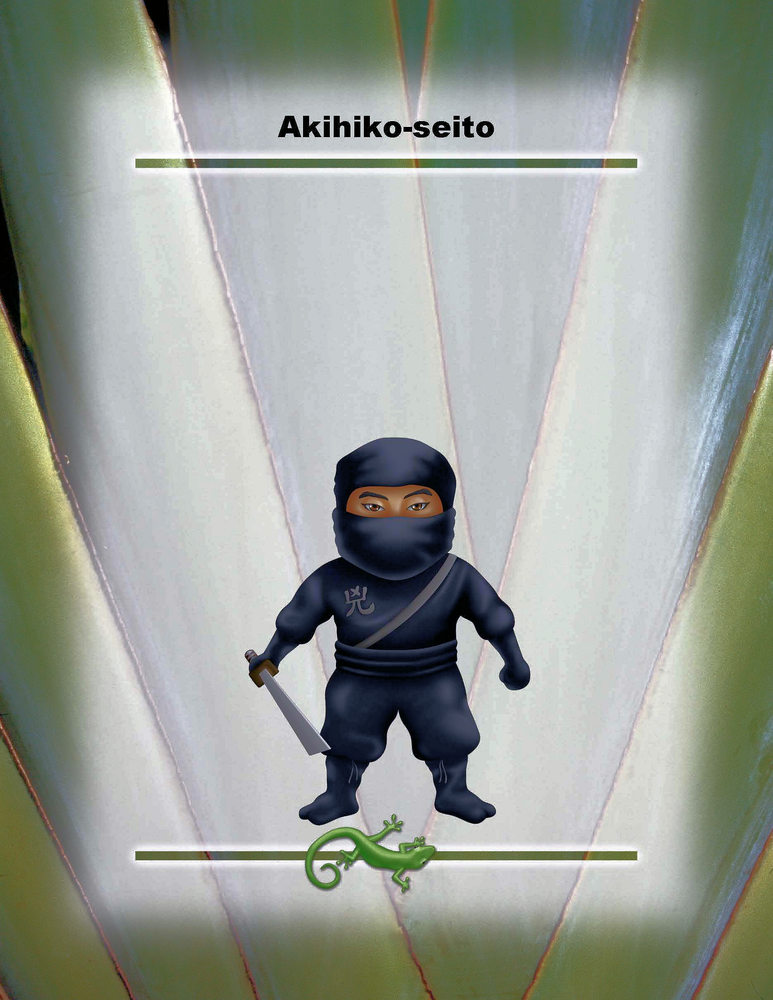 """Akihiko-seito Poster - 8.5"""" x 11"""""""