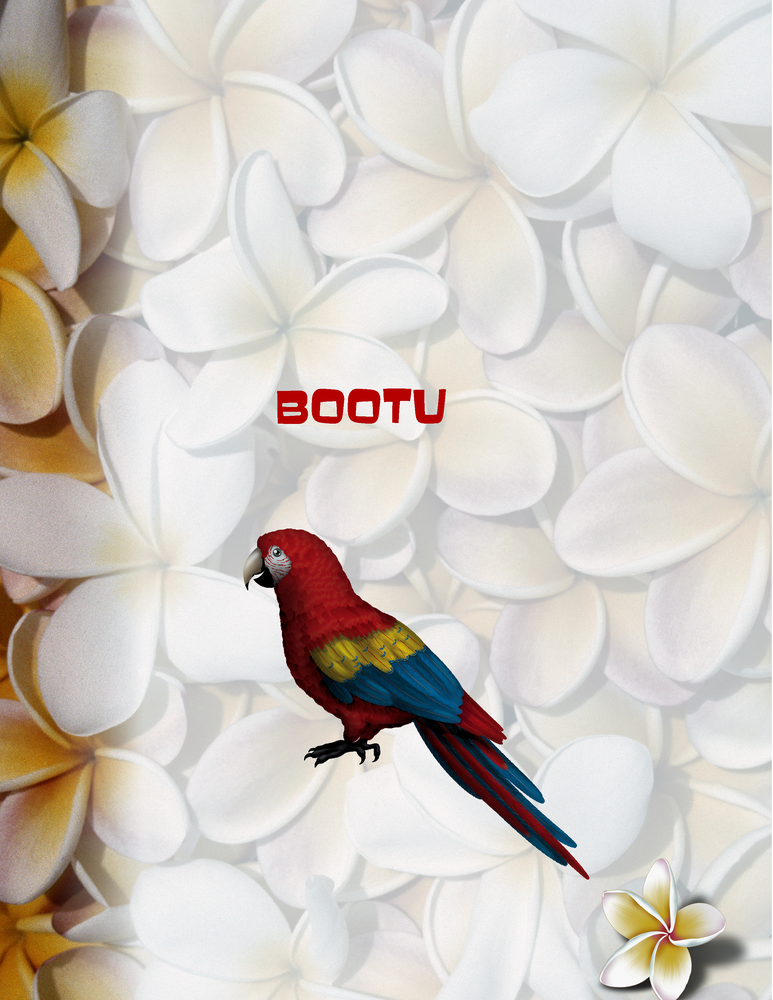 "Bootu Poster - 8.5"" x 11"""
