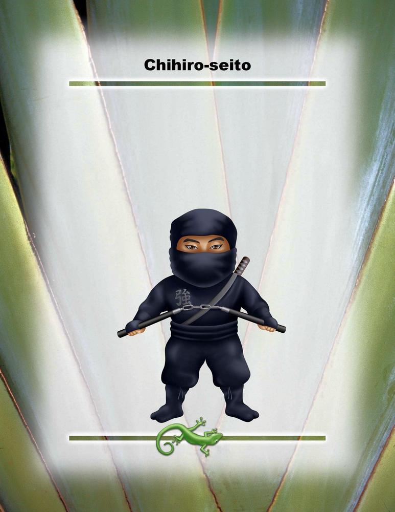"Chihiro-seito Poster - 8.5"" x 11"""