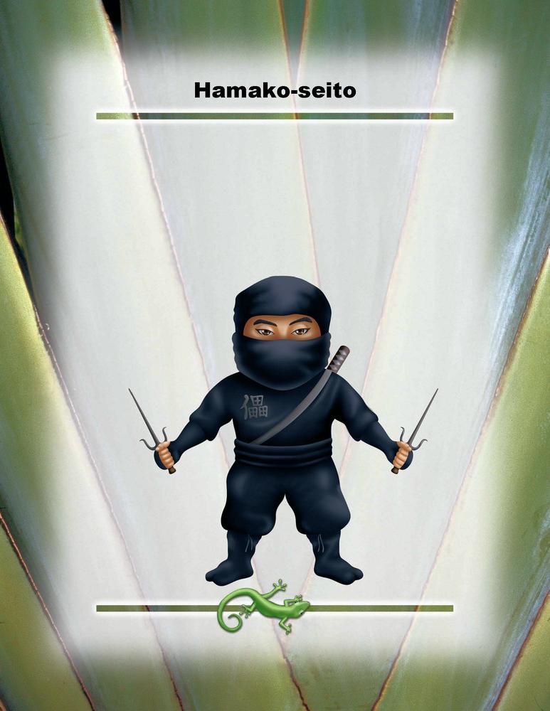"Hamako-seito Poster 8.5"" x 11"""