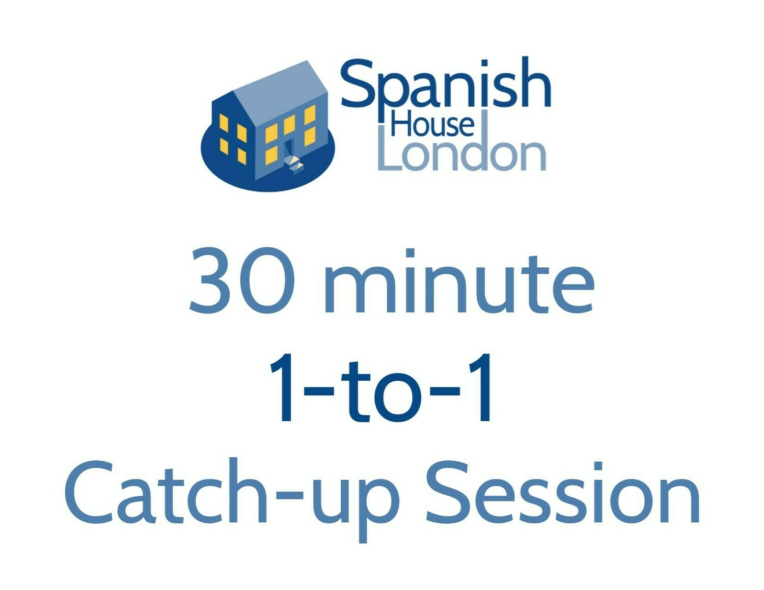 30 minute 1-to-1 catch-up lesson