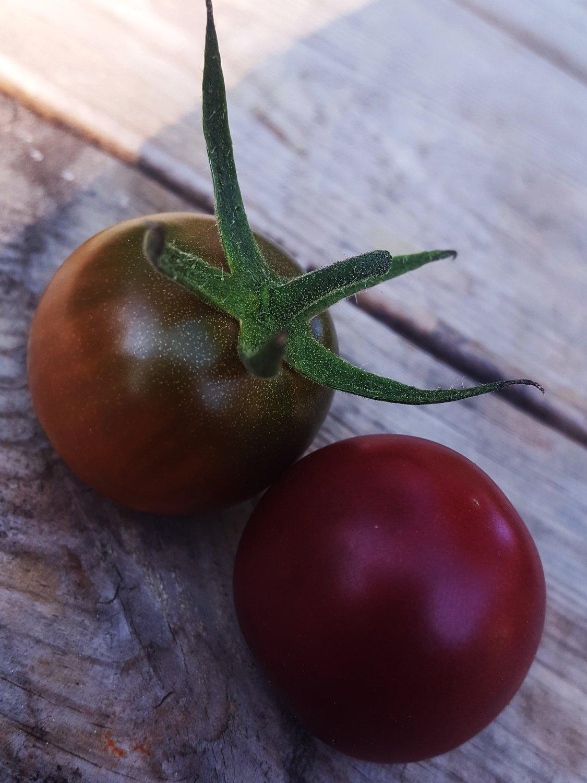 Black cherry - Noire