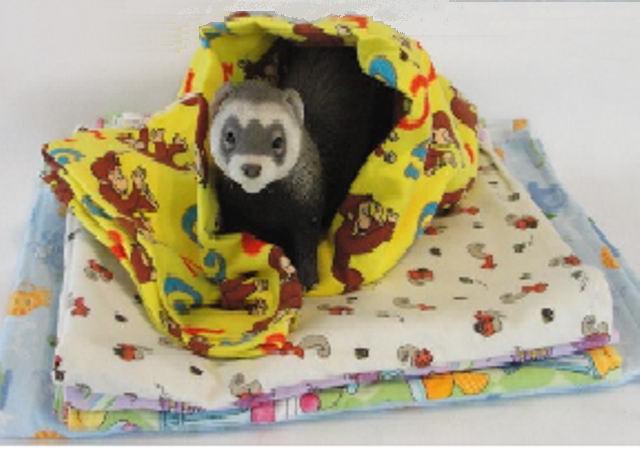 Ferret Snuggle Sleeper Blanket FTR-SngBlank