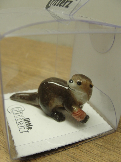 Otter with Bandage Liitte Critterz in Protective Case