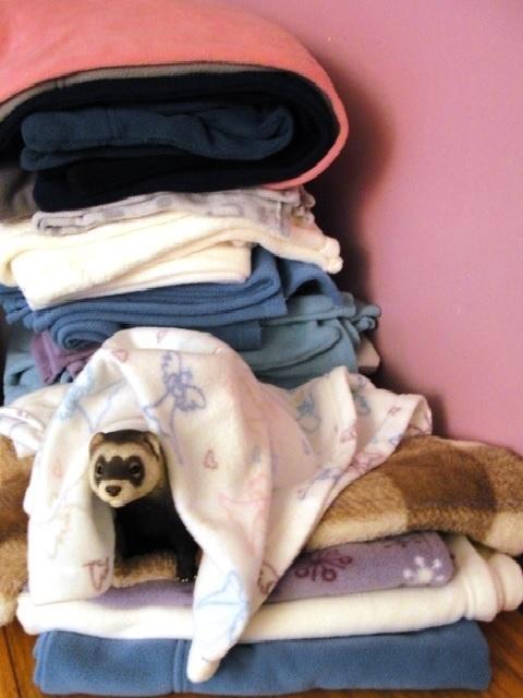 4-5 Pc Giving Tree Super Soft Fleece Bedding Special FTR-ShtrPk