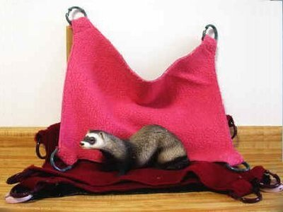 Ferret Luxury Suede Backed Hammock