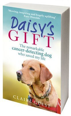 Daisy's Gift Book (Paperback)