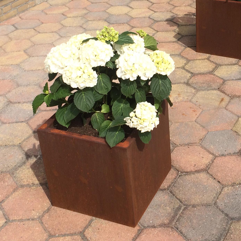 Plantenbak 700x700x800 (LxBxH in mm)