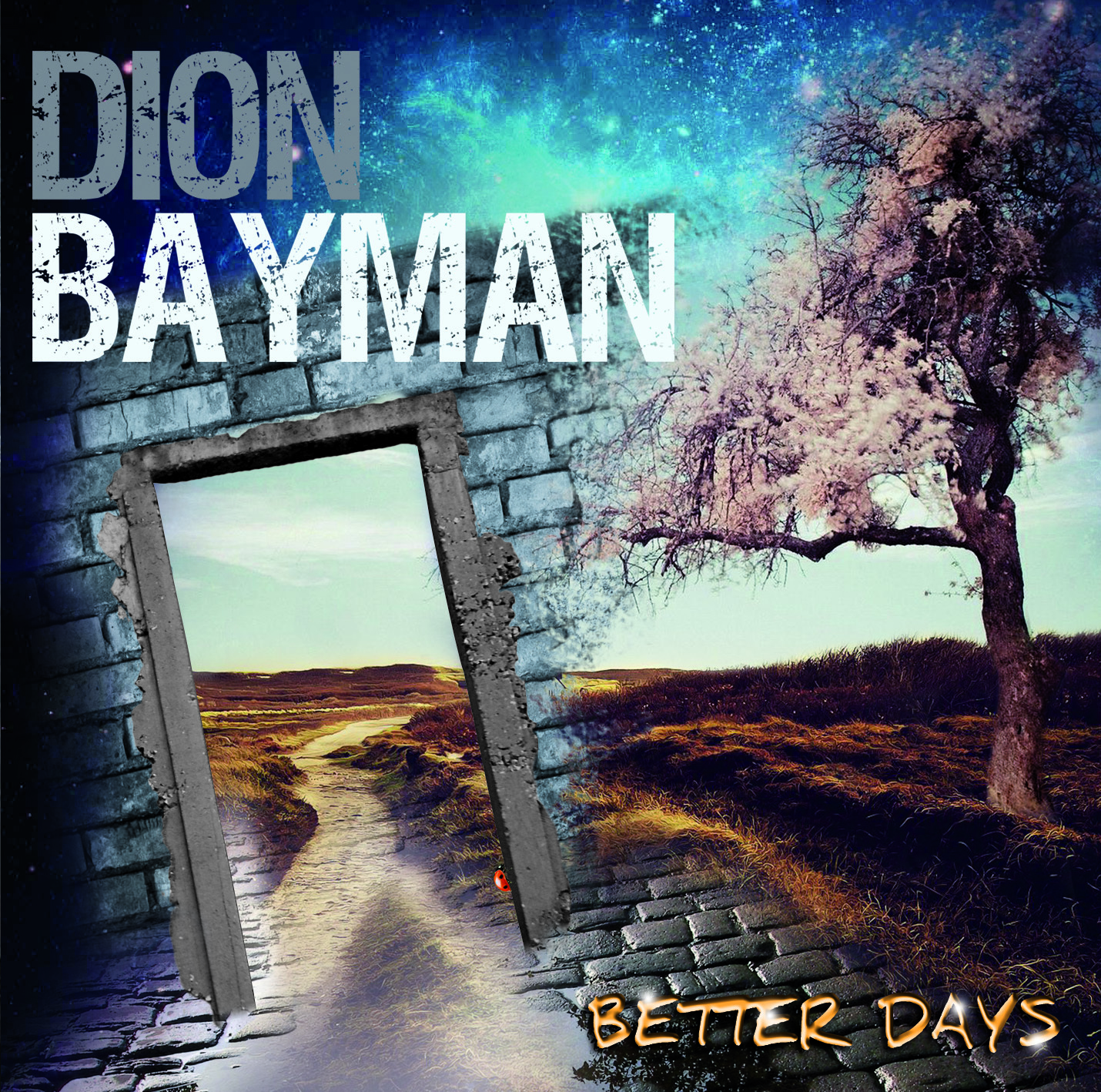 Dion Bayman - Better Days 0000010