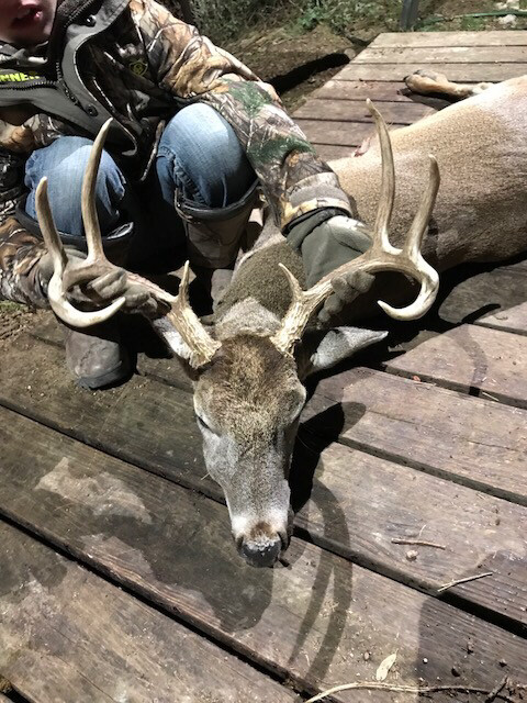 Almost 900 Acre Stephens County Hunting Lease With Creek $18k Per Year 6 Members Max