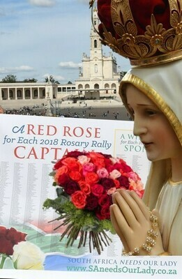 Send Roses to Our Lady