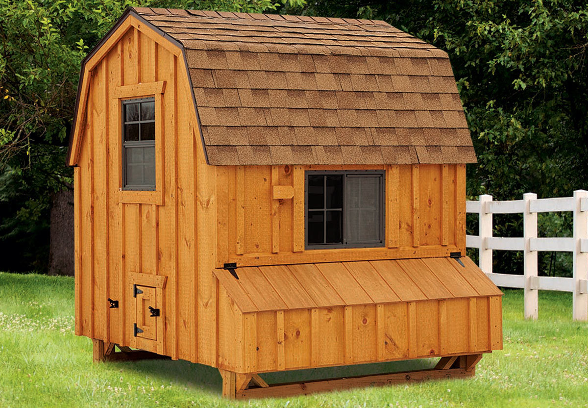 6x6 Dutch style large chicken coop with stained wood siding
