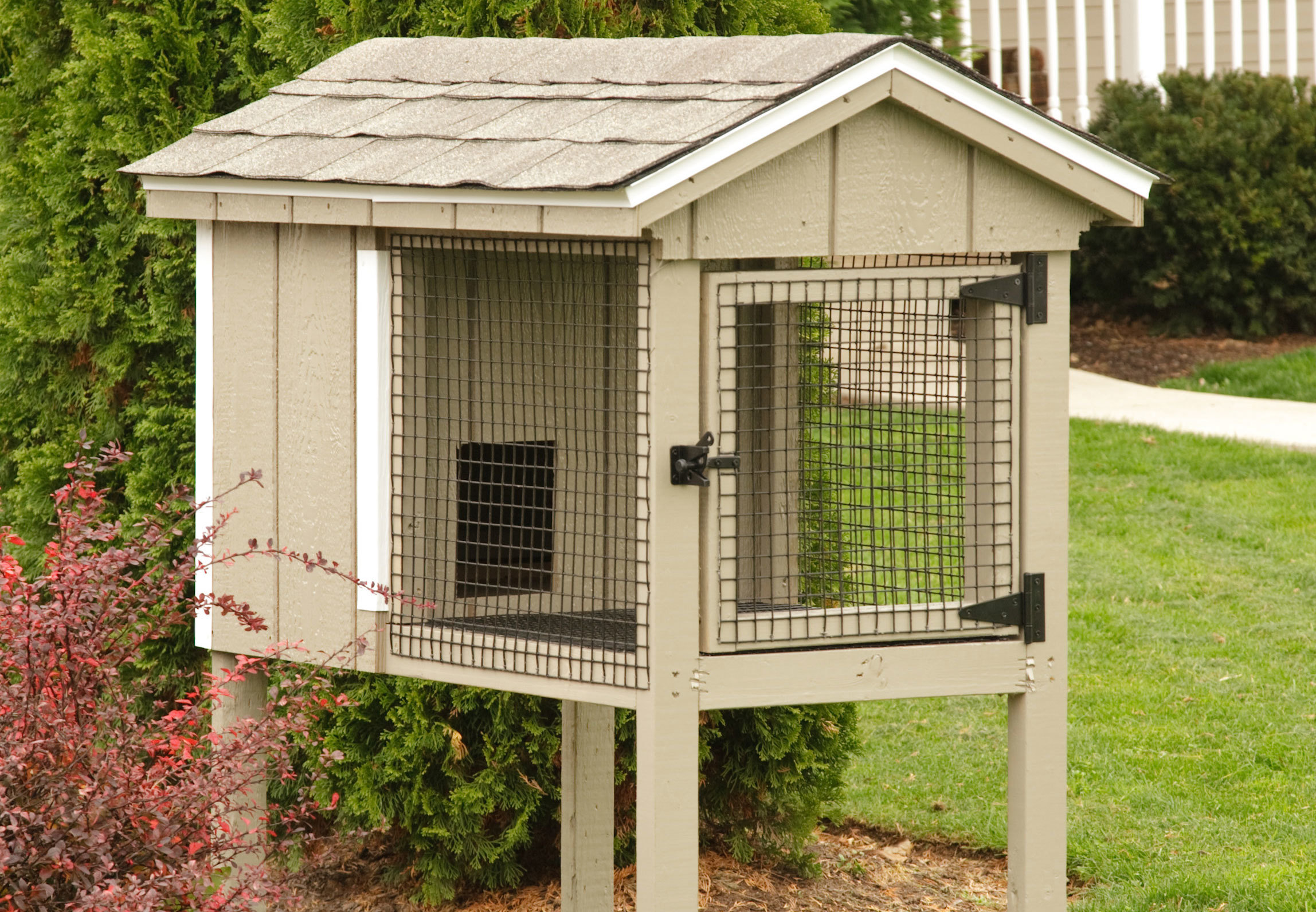2x4 Single Rabbit Hutch with Painted Siding