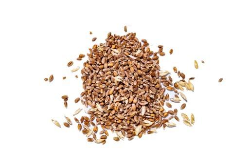 Whole Wheat 25kg