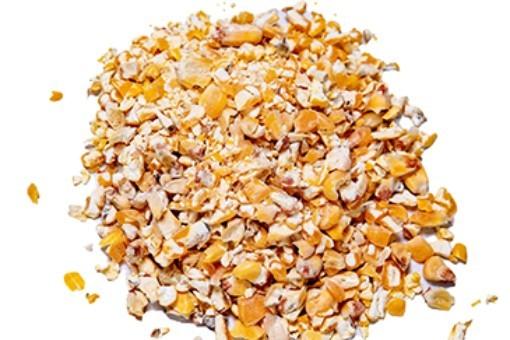 Kibbled Maize per Tonne KM/T