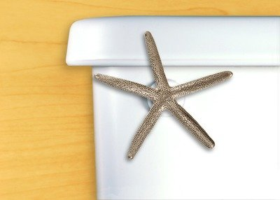 STARFISH FLUSH HANDLE