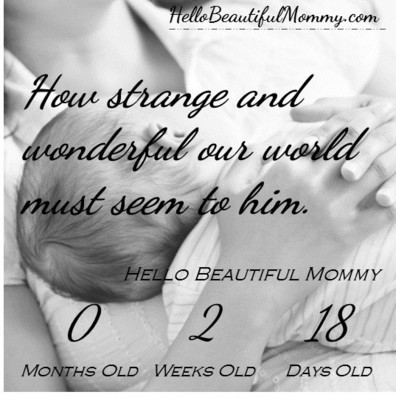 Hello Beautiful Mommy Calendar - Age of Baby