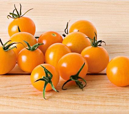 SunSugar Tomato Plant