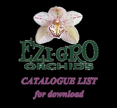 All Cymbidiums Flasks List 2019