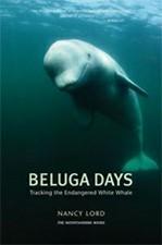Beluga Days