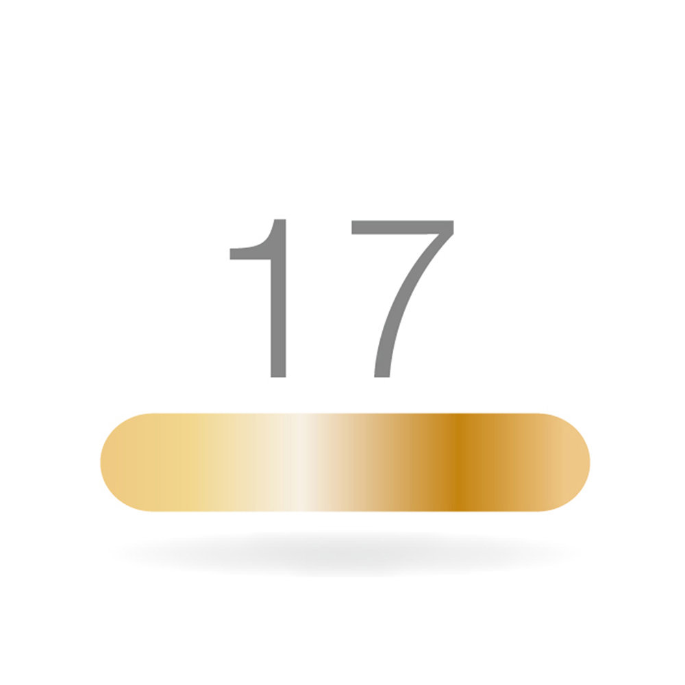 GOLDSTADT professional 17