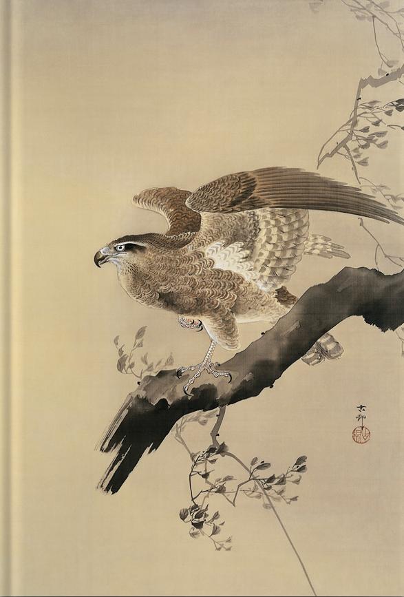 Libreta Halcón de Ohara Koson