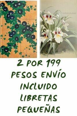 Flores Kiitsu y Sandor por 199 pesos envío incluido (pequeñas)