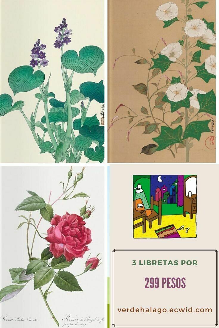 3 libretas (Flores) por 299 pesos envío incluido