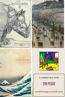 3 libretas (Rinoceronte, París y Ola) por 299 pesos envío incluido