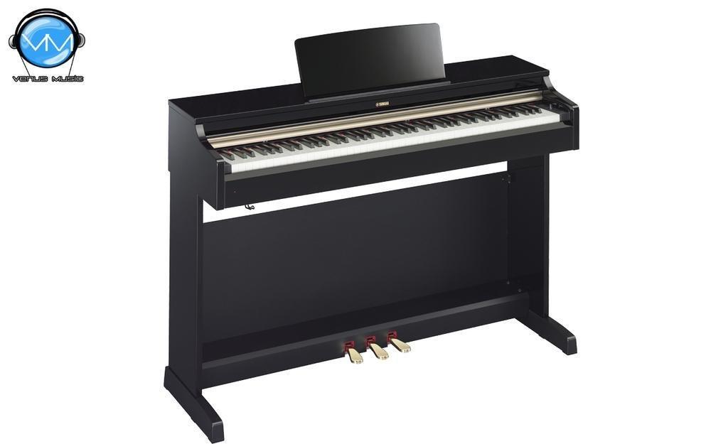 Piano digital Arius (Incluye adaptador PA300C), Negro Brillante NYDP162PESPA 868970