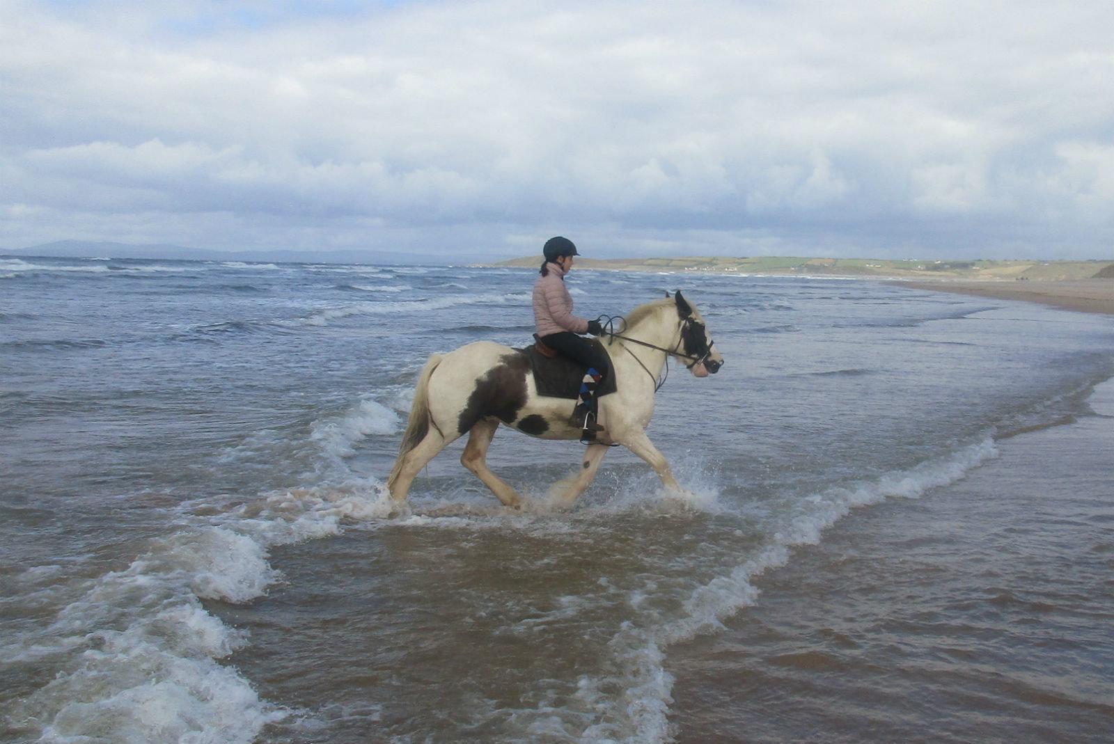 Private 2hr Beach Ride Voucher PBR2
