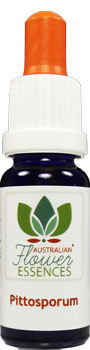 Pittosporum Blütenessenzen 15 ml