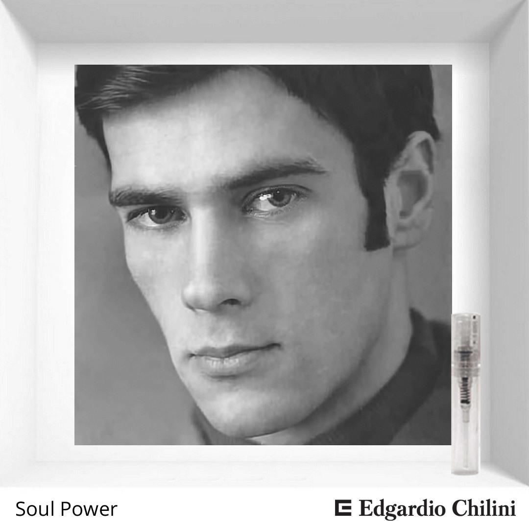 Древесный фужерный аромат Soul Power Edgardio Chilini 2 ml 00219